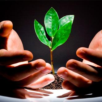 Børsen: Her er investorernes ni bud på vækst