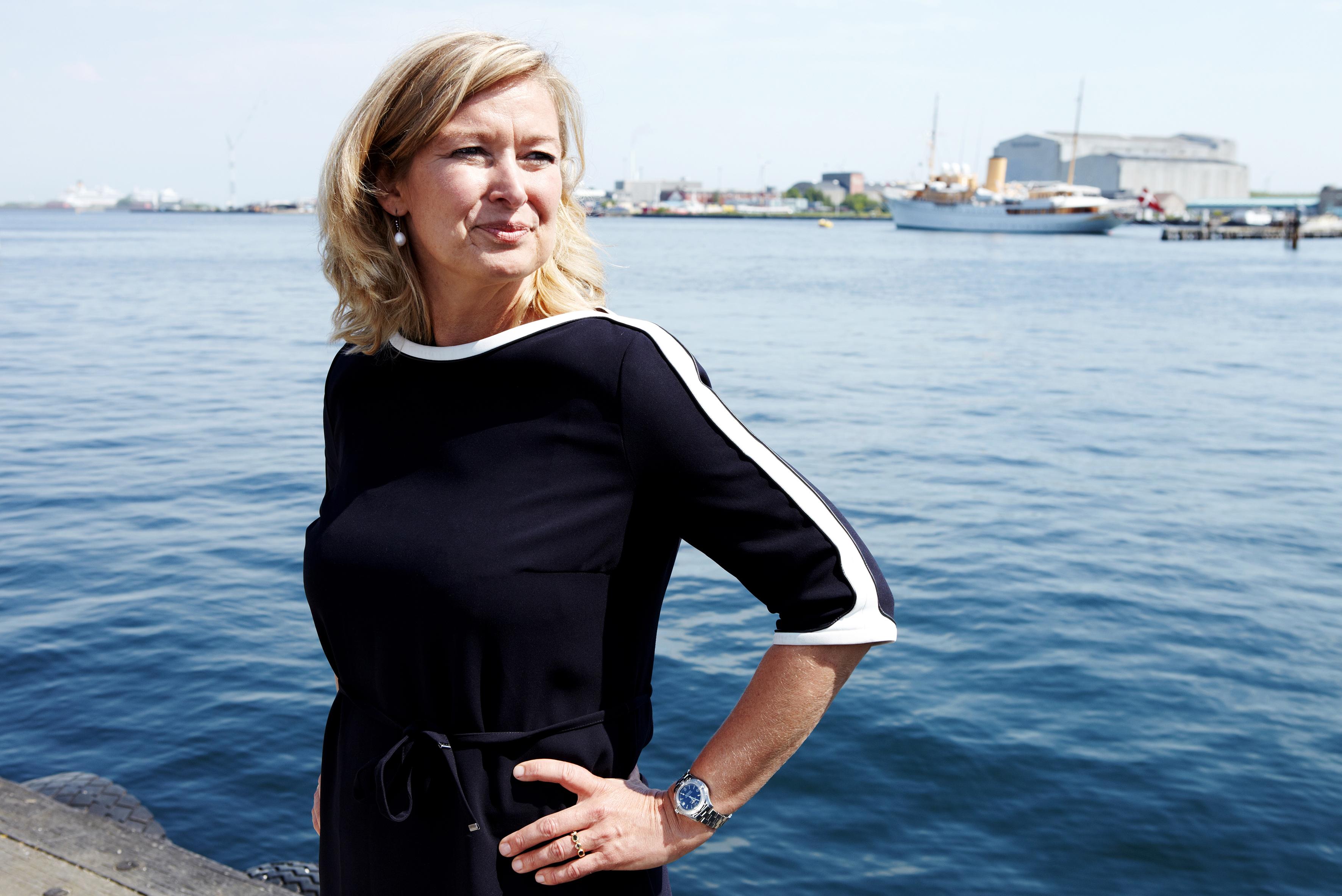Danmark har brug for kapitalfonde – som én ejerskabsform blandt mange